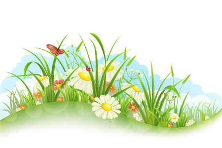 Spring summer banner with grass, flowers and butterfly Illustration