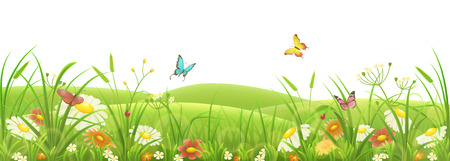 Spring summer meadow, green grass, flowers and butterflies Stock Illustratie