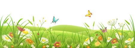 Spring summer meadow, green grass, flowers and butterflies Illustration