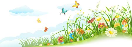 campo de flores: Prado verde primavera verano con césped, flores, mariposas y las nubes