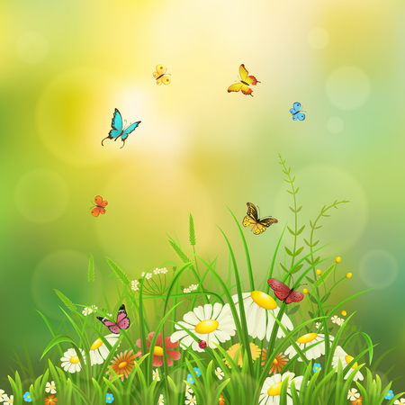 Spring nature background with green grass, flowers and butterflies