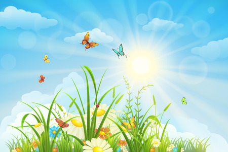 spring season: Summer and spring landscape, meadow with flowers, blue sky and butterflies