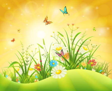 Spring or summer background with green grass, flowers and butterflies 矢量图像