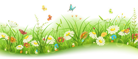 Spring or summer floral banner with green grass, flowers and butterflies