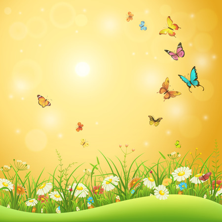 Spring or summer flowers, green grass and butterflies, nature background