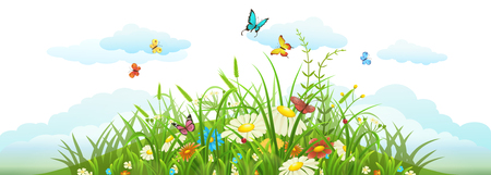 Summer and spring meadow banner with grass, flowers, butterflies and clouds Illustration