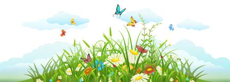 Verano y primavera pradera banner con hierba, flores, mariposas y nubes Foto de archivo - 53040420