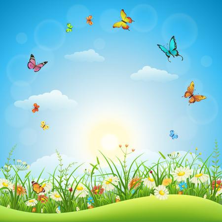 Wiosną lub latem krajobraz z zielona trawa, kwiaty i motyle