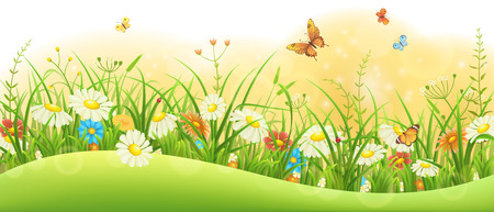 tuft: Summer floral banner with green grass, flowers and butterflies