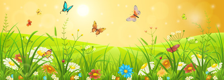 Summer meadow banner with flowers, grass and butterflies