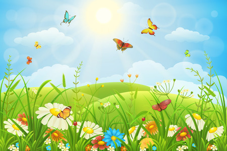 Summer or spring lush meadow with colorful flowers and butterflies