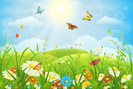 papillon: Été ou au printemps prairie luxuriante avec des fleurs et des papillons colorés Illustration
