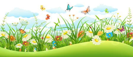 Summer landscape banner with meadow flowers, grass and butterflies Çizim