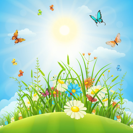 Summer or spring meadow landscape with flowers, grass and butterflies