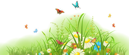 tuft: Spring and summer meadow banner with grass, colorful flowers and butterflies Illustration