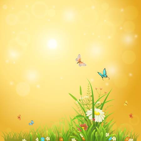 Bright summer background with sunshine, flowers, butterflies and grass Illustration