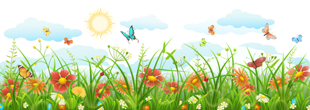 Summer grass with flowers, butterflies, sun and clouds Illustration