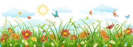 Summer grass with flowers, butterflies, sun and clouds Illusztráció