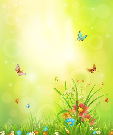 Summer background with meadow grass, flowers and insects