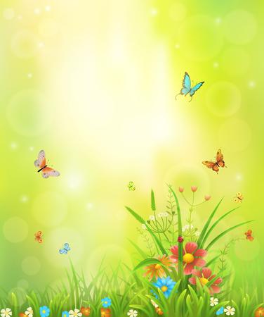 Sfondo estivo con prato erba, fiori e insetti