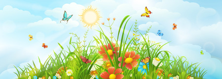 Summer and spring meadow backdrop with green grass, flowers and sky