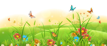 Summer sunny meadow banner with green grass, flowers and flies