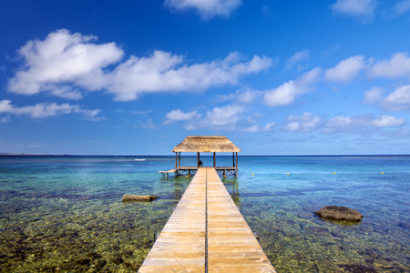 Indian Ocean with jetty in Mauritius Island 版權商用圖片 - 94895475