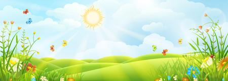 Prato soleggiato della primavera o di estate con erba verde e fiori.