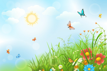 Summer sunny meadow with green grass, flowers and butterflies.