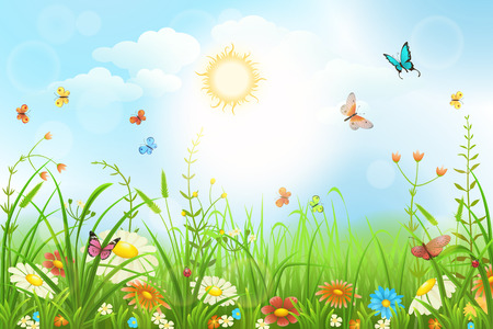 Summer or spring meadow with green grass, flowers and butterflies scenery.