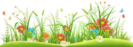 Green grass with spring flowers and butterflies on white background. Vettoriali