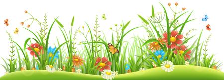 Erba verde con i fiori e le farfalle della molla su fondo bianco.