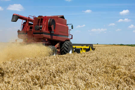 Combine harvester in action at wheat field  Stock fotó