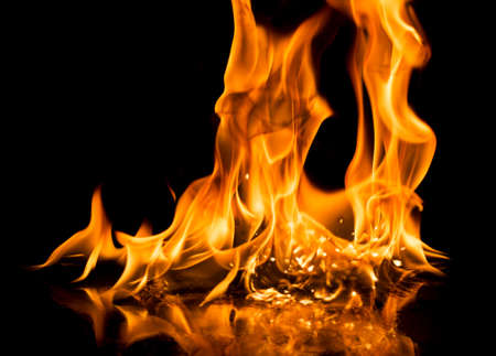 Burning fire on black background.