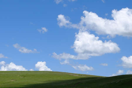 xp: Nature landscape view of grassland and blue sky with white cloud Stock Photo