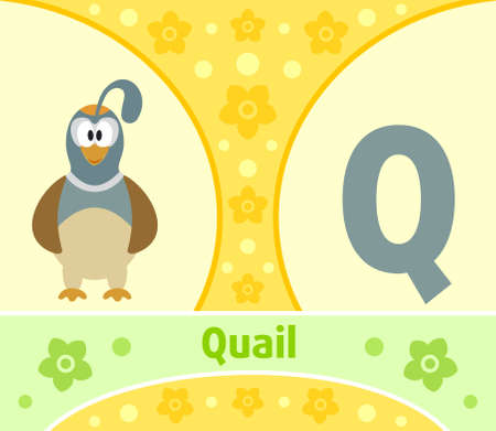 The English alphabet  with Quail Vector