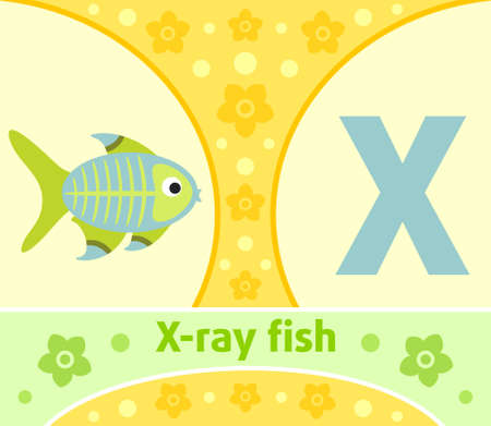 The English alphabet with X-ray fish Vector