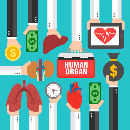transplantation: Human Transplantation infographic,buying agencies flat design. Illustration