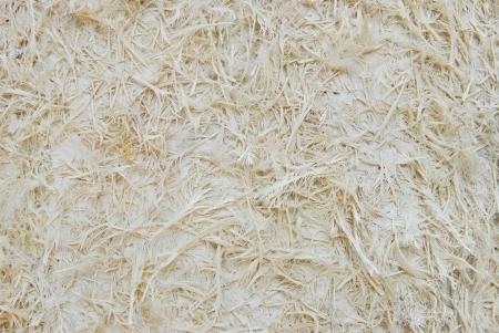 pulp: paper pulp