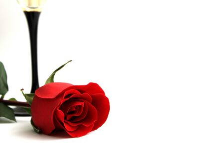 Red rose Valentines on white background photo