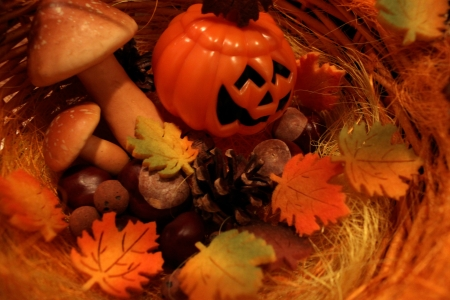 Autumn still life with halloween pumpkins, mushrooms and chestnuts photo