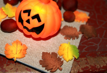 Autumn still life with halloween pumpkin and chestnuts Stock Photo - 16002263