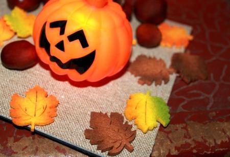 Autumn still life with halloween pumpkin and chestnuts Stock Photo - 16002263