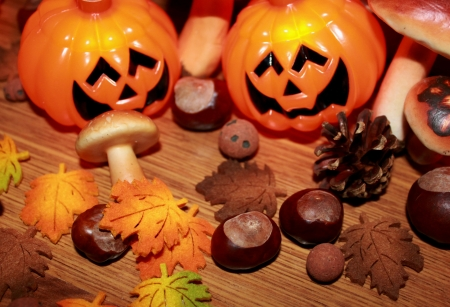 Autumn still life with halloween pumpkin, mushrooms and chestnuts  Stock Photo - 16002262