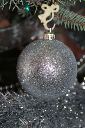 Metallic Christmas bauble hanging on fir branch  photo