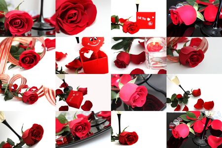 Red rose collage photo