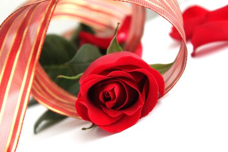 Red rose with red ribbon photo