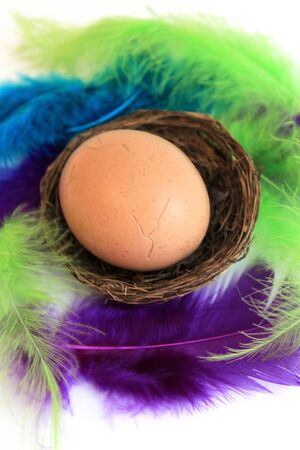 Easter egg in basket with feathers on white  photo