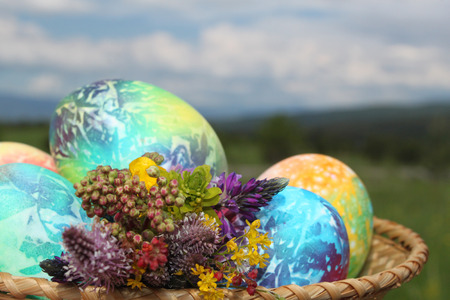 Colored easter eggs in basket and spring flowers Stock Photo