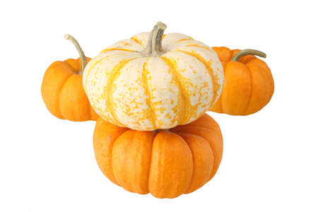 four miniture pumkins isolated on white background Stock Photo